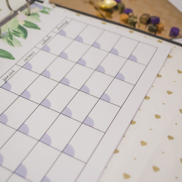 Planner mensual mes vista