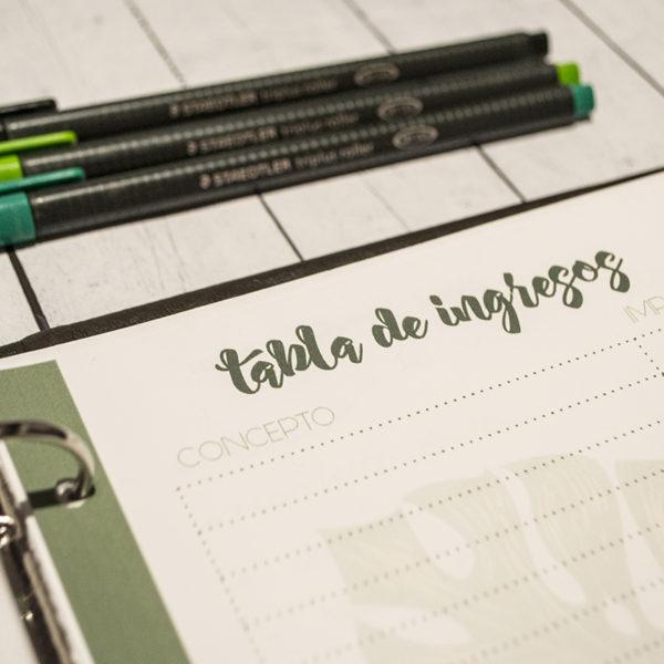 Planner tabla ingresos
